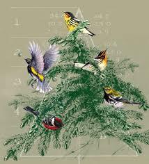 KPA warblers