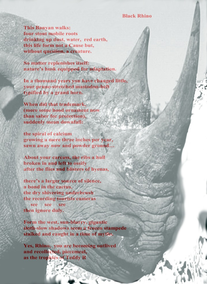 Black Rhino Poem merge 8 x 11