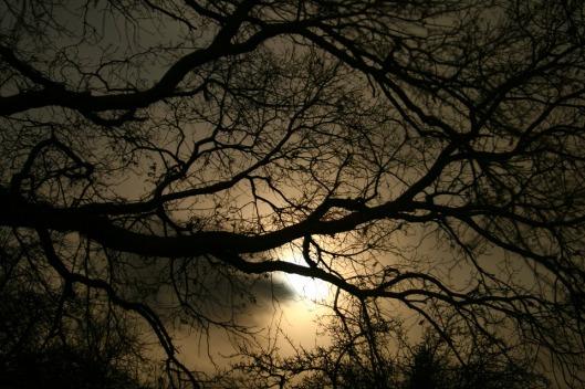 darkness-1232724_960_720